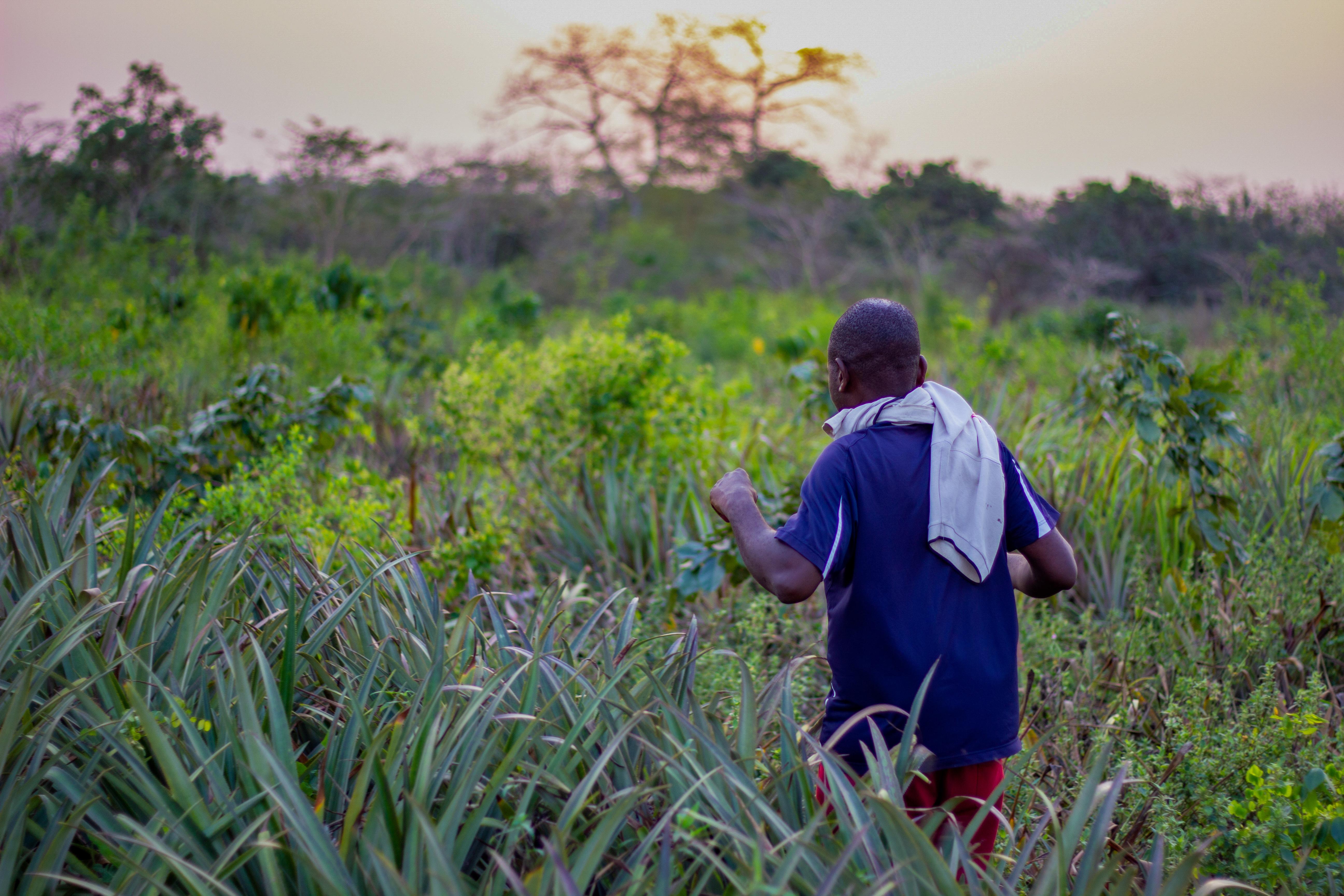 man walking in a field towards the sunset